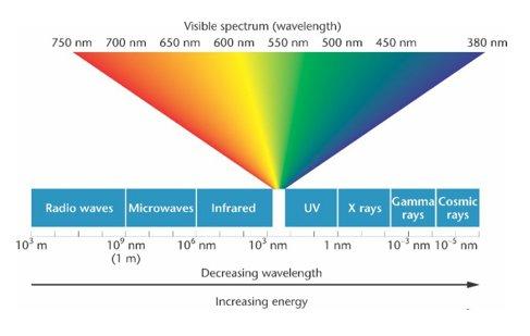 Cahaya & Penglihatan
