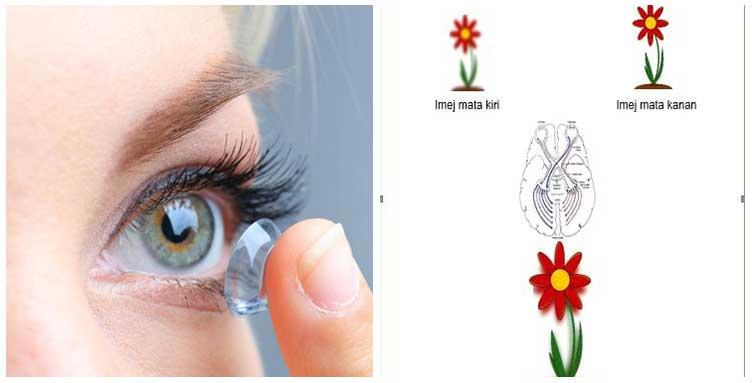 Mata Sering Rasa Tegang Dan Kabur? Anda Mungkin Mengalami Anisometropia